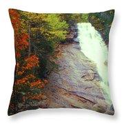 Ripley Falls Autumn Throw Pillow