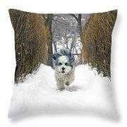 Ripley's Run Throw Pillow