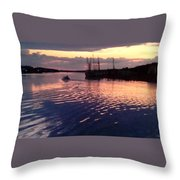 Ripple In Still Waters  Throw Pillow