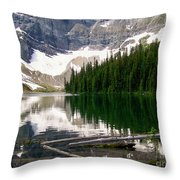 Rippled Mirror Throw Pillow