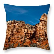 Rippled Walls Throw Pillow