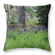 Ripples Behind Wildflowers Throw Pillow