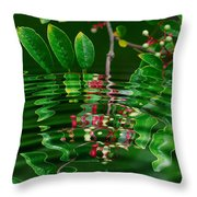 Ripples In The Mirror Throw Pillow