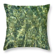 Ripples In The River Throw Pillow