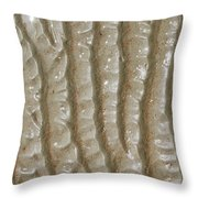 Ripples In The Sand I Throw Pillow