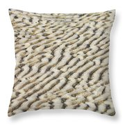 Ripples In The Sand IIi Throw Pillow