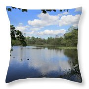 Ripples Of Land And Water Throw Pillow