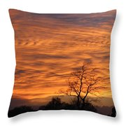 Ripples Of Orange Throw Pillow