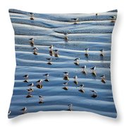 Ripples Of Sand Dotted With Plovers Throw Pillow