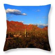 Rising Moon In Arizona Throw Pillow