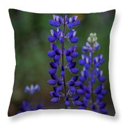 Rising To The Occasion Throw Pillow