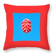 Ristra In The Sky Throw Pillow