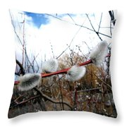 Rite Of Spring Throw Pillow