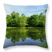 Ritter Springs Pond Throw Pillow