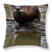 Rive Otter Throw Pillow