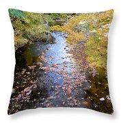 River 3 Throw Pillow