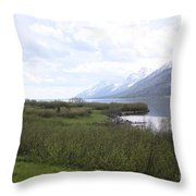River Along The Rockies Throw Pillow