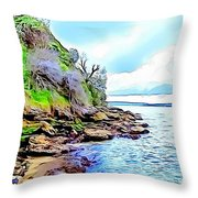 River And Trees Pictures Throw Pillow