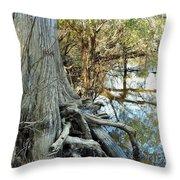 River Art Throw Pillow