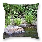 River At Duchesne Falls Throw Pillow