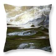 River Aux Sables, Ontario, May 2015 Throw Pillow