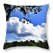 River Banks Throw Pillow