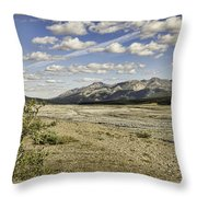 River Bed In Denali National Park Throw Pillow