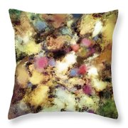 River Bed Throw Pillow