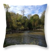 River Bends Throw Pillow