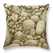 River Carpet Throw Pillow