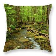 River Crossing On The Maryland Appalachian Trail Throw Pillow