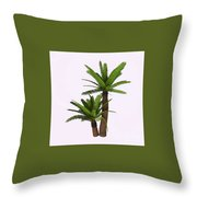 River Cycad Plants Throw Pillow