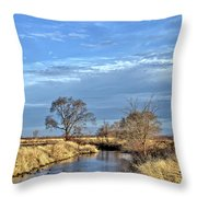 River Duck Morning 2 Throw Pillow