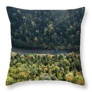 River Dunajec In Pieniny Mountains Throw Pillow