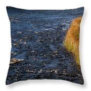 River Edge Throw Pillow