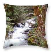 River For Your Thoughts Throw Pillow