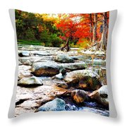 River Gone Throw Pillow