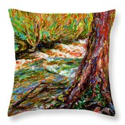 River Hafren In September Throw Pillow