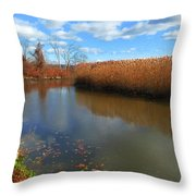 River Hudson Autumn Creek Throw Pillow
