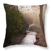 River In Afternoon Sunhaze  Throw Pillow