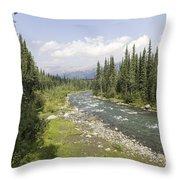 River In Denali National Park Throw Pillow