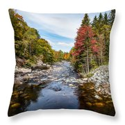 River In Fall Throw Pillow