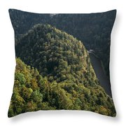 River In Forest Mountains Throw Pillow