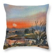 River In March Throw Pillow