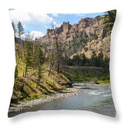 River In Shoshone Throw Pillow
