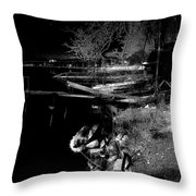 River In The Night... Throw Pillow