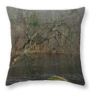 River In The Spring Throw Pillow