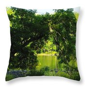 River In The Summer Throw Pillow