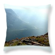 River In The Valley Iv Throw Pillow