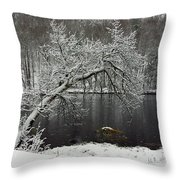 River In The Winter Throw Pillow